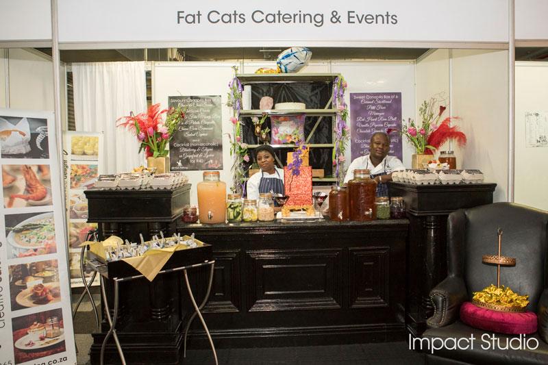 Fat-Cats-1